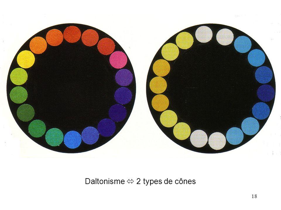 18 Daltonisme  2 types de cônes