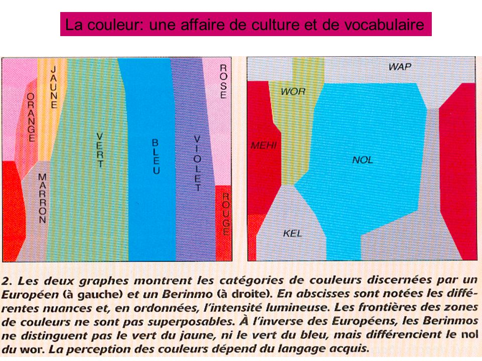 20 La couleur: une affaire de culture et de vocabulaire
