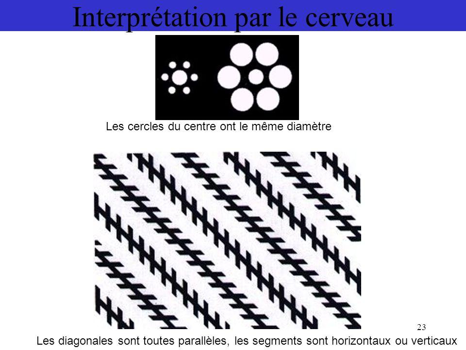 23 Interprétation par le cerveau Les cercles du centre ont le même diamètre Les diagonales sont toutes parallèles, les segments sont horizontaux ou ve