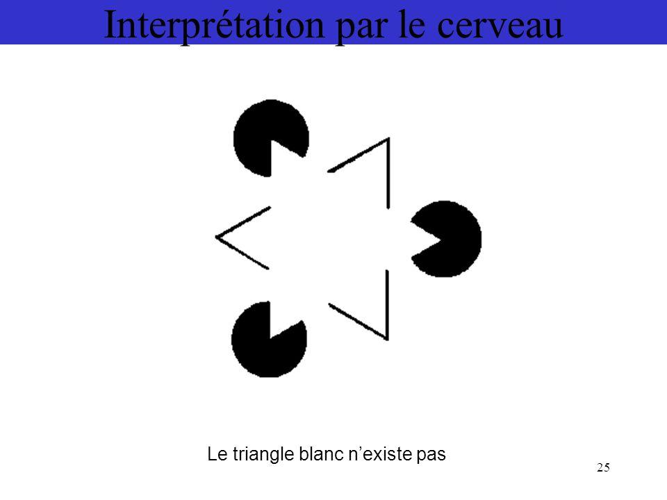 25 Interprétation par le cerveau Le triangle blanc n'existe pas