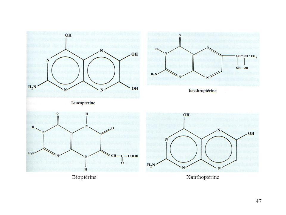 47 BioptérineXanthoptérine