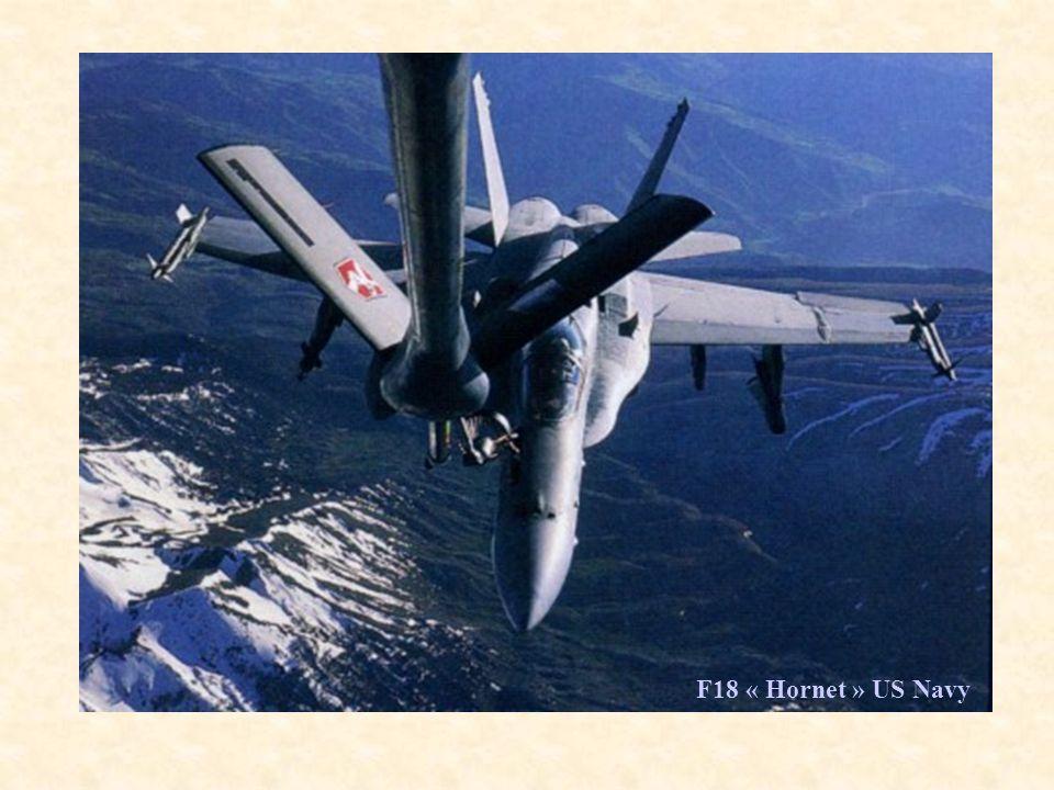 F18 « Hornet » US Navy