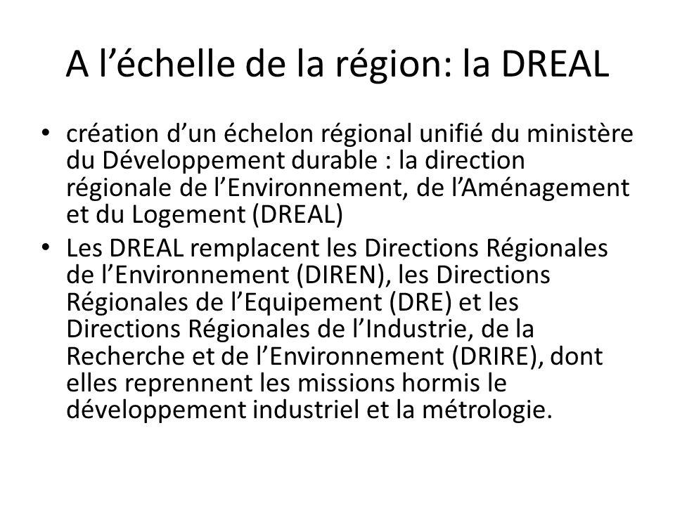A l'échelle de la région: la DREAL • création d'un échelon régional unifié du ministère du Développement durable : la direction régionale de l'Environ