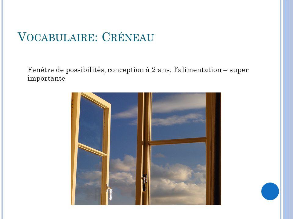 V OCABULAIRE : C RÉNEAU Fenêtre de possibilités, conception à 2 ans, l'alimentation = super importante