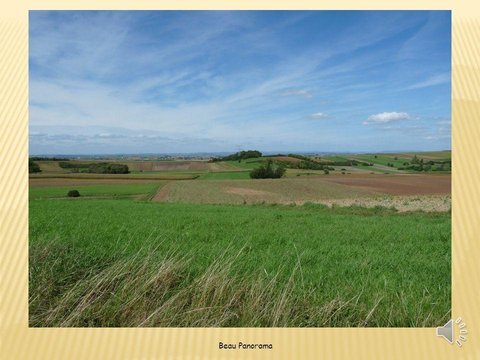 Beau Panorama