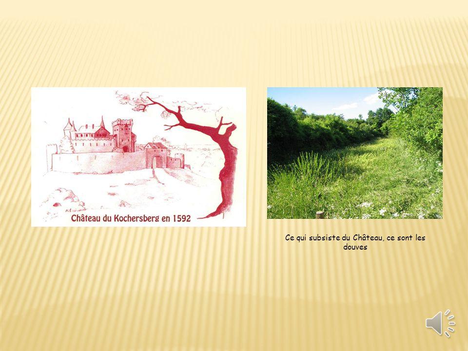le sommet du Kochersberg, (301m) emplacement de l ancien château et du mémorial de la tour de Chappe actuel.