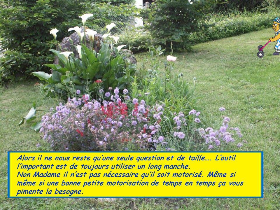 L'entretien courant est également important, n'oubliez pas de visiter votre petit jardin matin et soir, pensez à bien l'aérer, le désherber, lutter co
