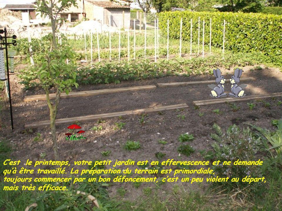 C'est le printemps, votre petit jardin est en effervescence et ne demande qu'à être travaillé.