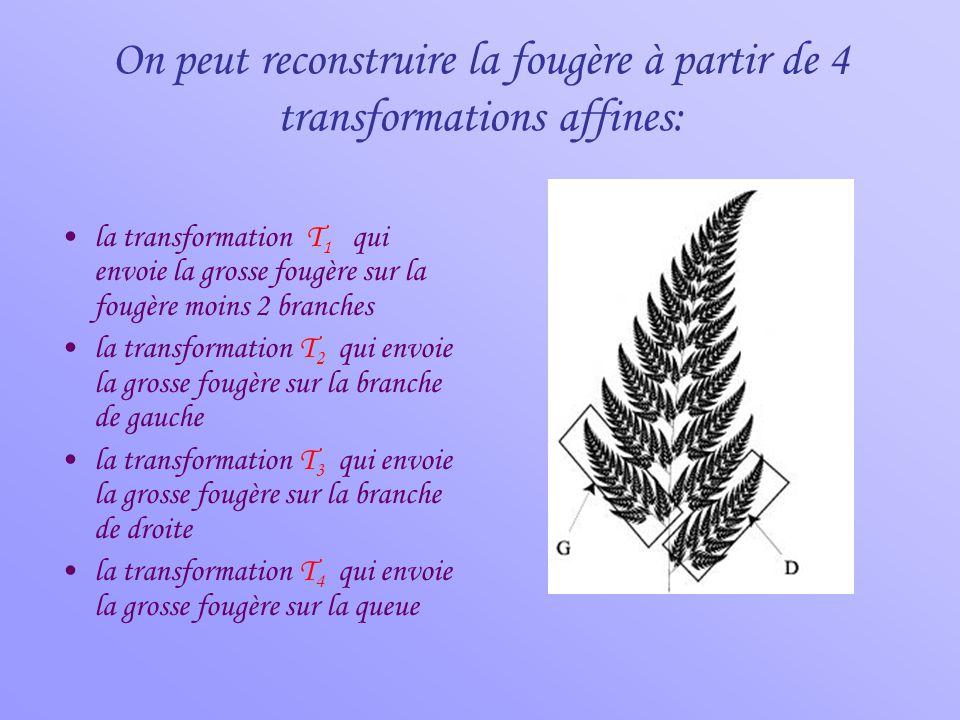 On peut reconstruire la fougère à partir de 4 transformations affines: •la transformation T 1 qui envoie la grosse fougère sur la fougère moins 2 bran