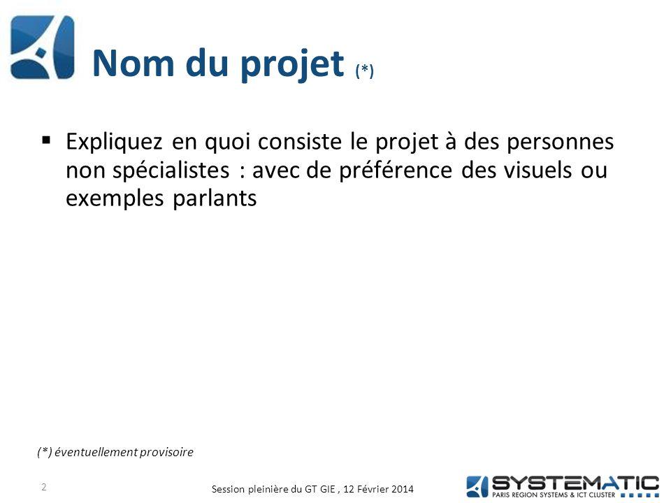 Nom du projet (*)  Expliquez en quoi consiste le projet à des personnes non spécialistes : avec de préférence des visuels ou exemples parlants 2 (*) éventuellement provisoire Session pleinière du GT GIE, 12 Février 2014