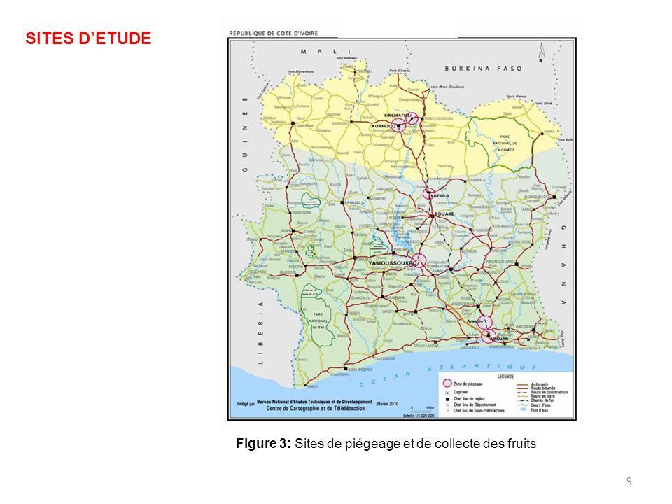 10 SudCentreNord Localités Abidjan Azaguié Yamoussoukro Katiola Korhogo Sinématiali Température 26,9°C27,2°C25,5°C Pluviométrie 1850 mm1200 mm1100 mm Végétation Forêt denseSavane arborée au centre Zone de forêt au sud du V baoulé Savane herbacée Tableau I: Caractéristiques du milieu d'étude