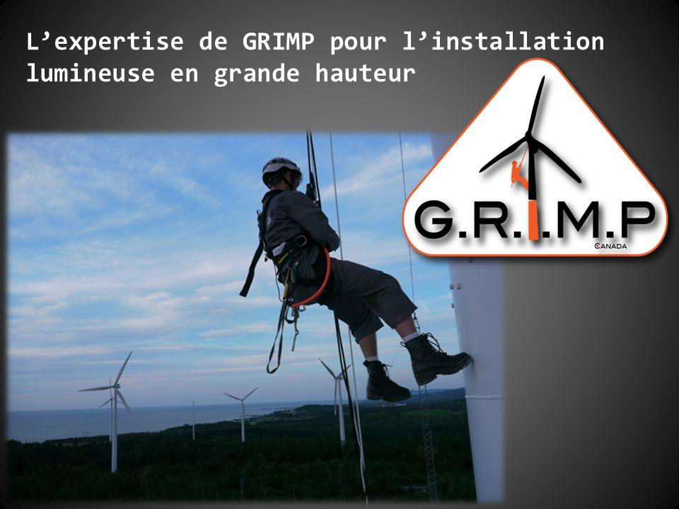 L'expertise de GRIMP pour l'installation lumineuse en grande hauteur