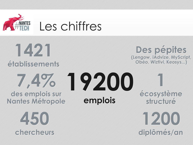 Les chiffres 19200 emplois 19200 emplois Des pépites (Lengow, iAdvize, MyScript, Obéo, Wiztivi, Keosys...) Des pépites (Lengow, iAdvize, MyScript, Obé