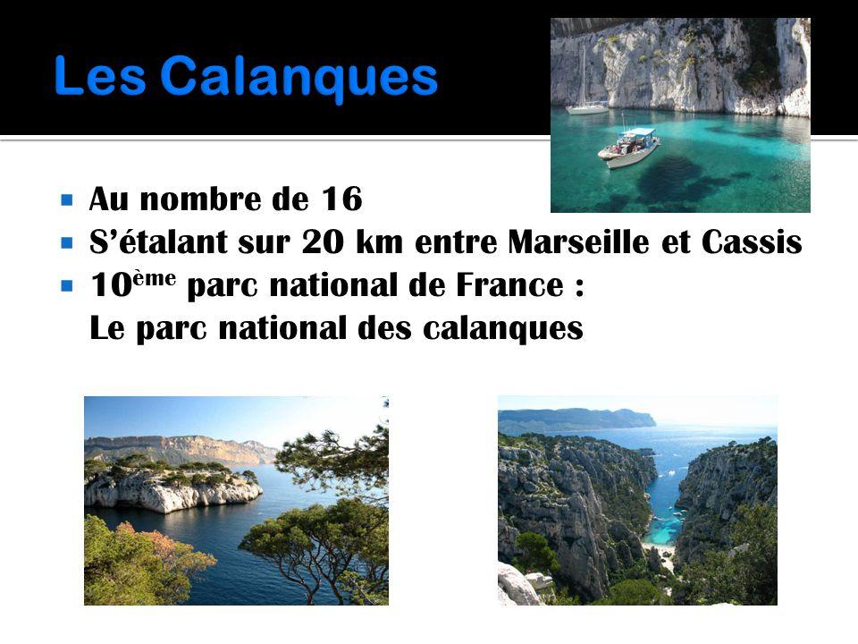  Au nombre de 16  S'étalant sur 20 km entre Marseille et Cassis  10 ème parc national de France : Le parc national des calanques