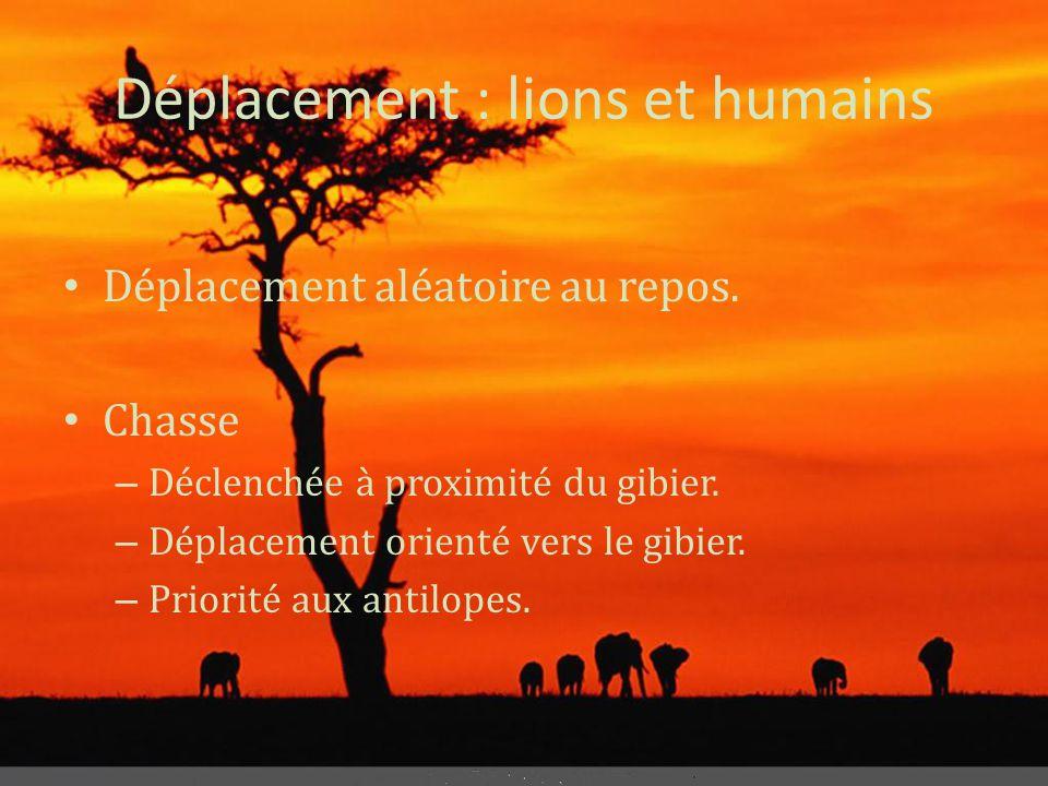 Déplacement : lions et humains • Déplacement aléatoire au repos. • Chasse – Déclenchée à proximité du gibier. – Déplacement orienté vers le gibier. –