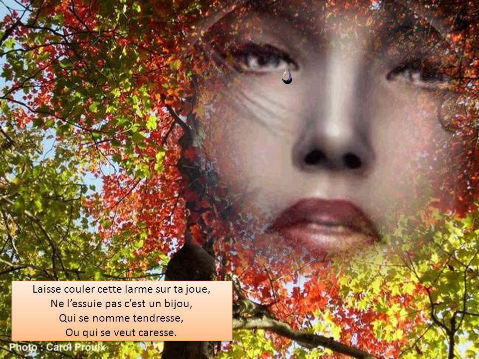 Laisse couler cette larme sur ta joue, Ne l'essuie pas c'est un bijou, Qui se nomme tendresse, Ou qui se veut caresse.