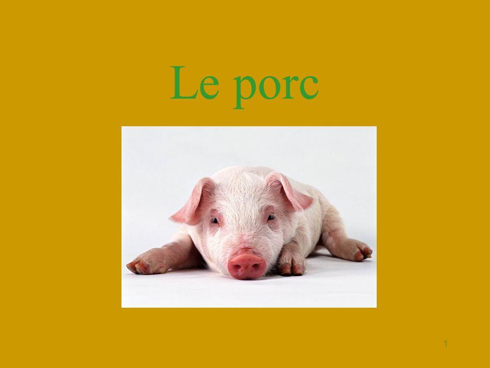 2 Terminologie •Le porc est un mammifère pachyderme de la famille des suidés vulgairement appelé cochon