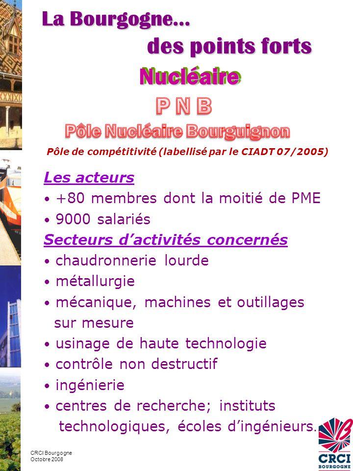 CRCI Bourgogne Octobre 2008 Les acteurs • +80 membres dont la moitié de PME • 9000 salariés Secteurs d'activités concernés • chaudronnerie lourde • métallurgie • mécanique, machines et outillages sur mesure • usinage de haute technologie • contrôle non destructif • ingénierie • centres de recherche; instituts technologiques, écoles d'ingénieurs… NucléaireNucléaire La Bourgogne… des points forts Pôle de compétitivité (labellisé par le CIADT 07/2005)