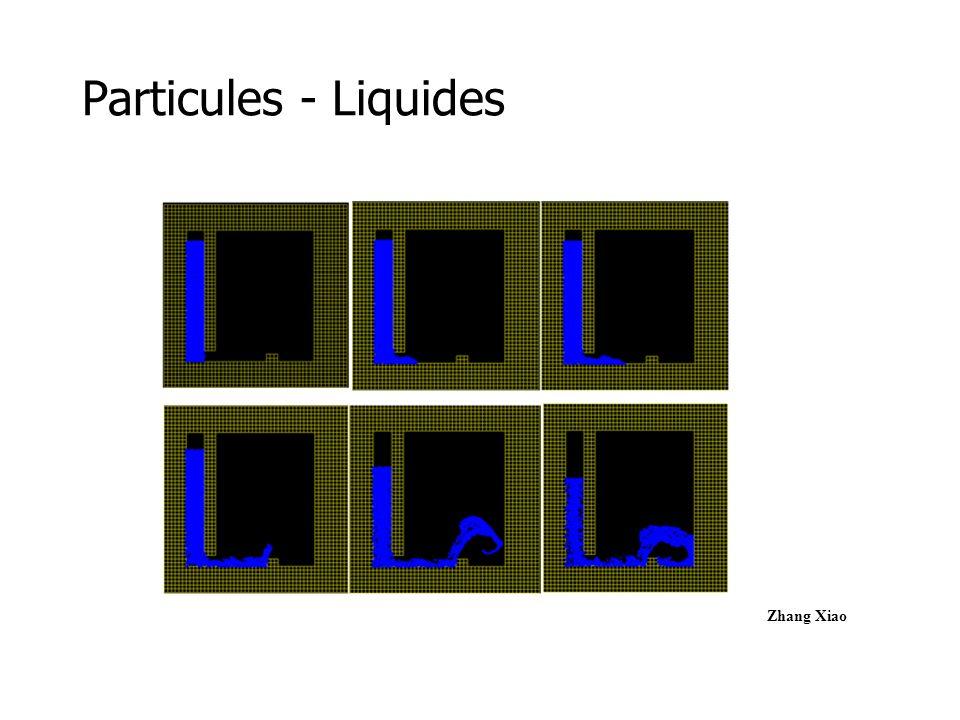 Particules - Fluides Stam Nevrax Fontaine