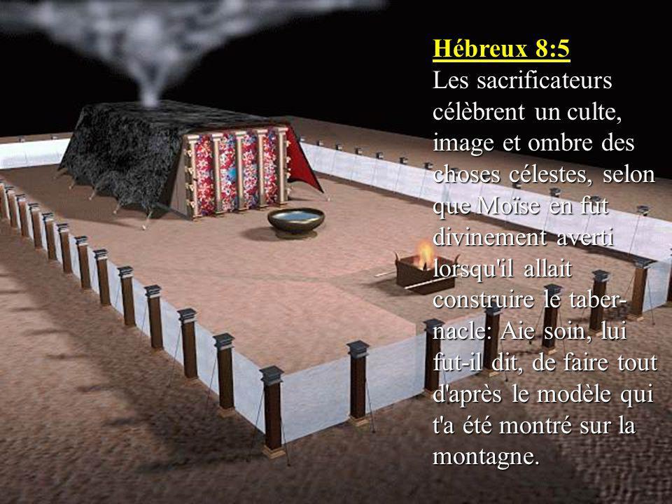 Hébreux 8:5 Les sacrificateurs célèbrent un culte, image et ombre des choses célestes, selon que Moïse en fut divinement averti lorsqu il allait construire le taber- nacle: Aie soin, lui fut-il dit, de faire tout d après le modèle qui t a été montré sur la montagne.