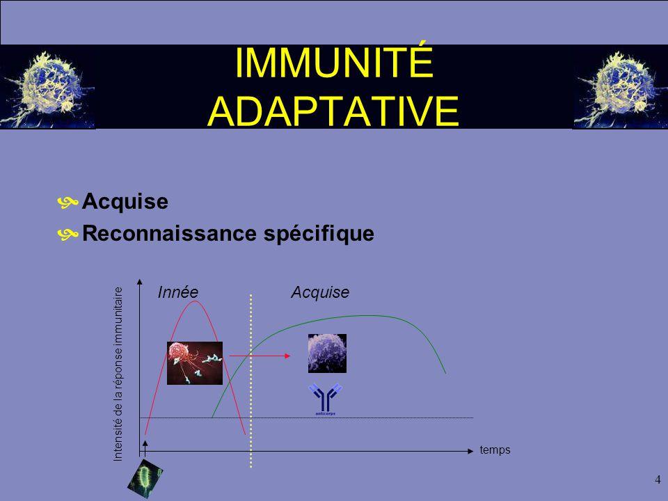 4 IMMUNITÉ ADAPTATIVE  Acquise  Reconnaissance spécifique Intensité de la réponse immunitaire temps InnéeAcquise