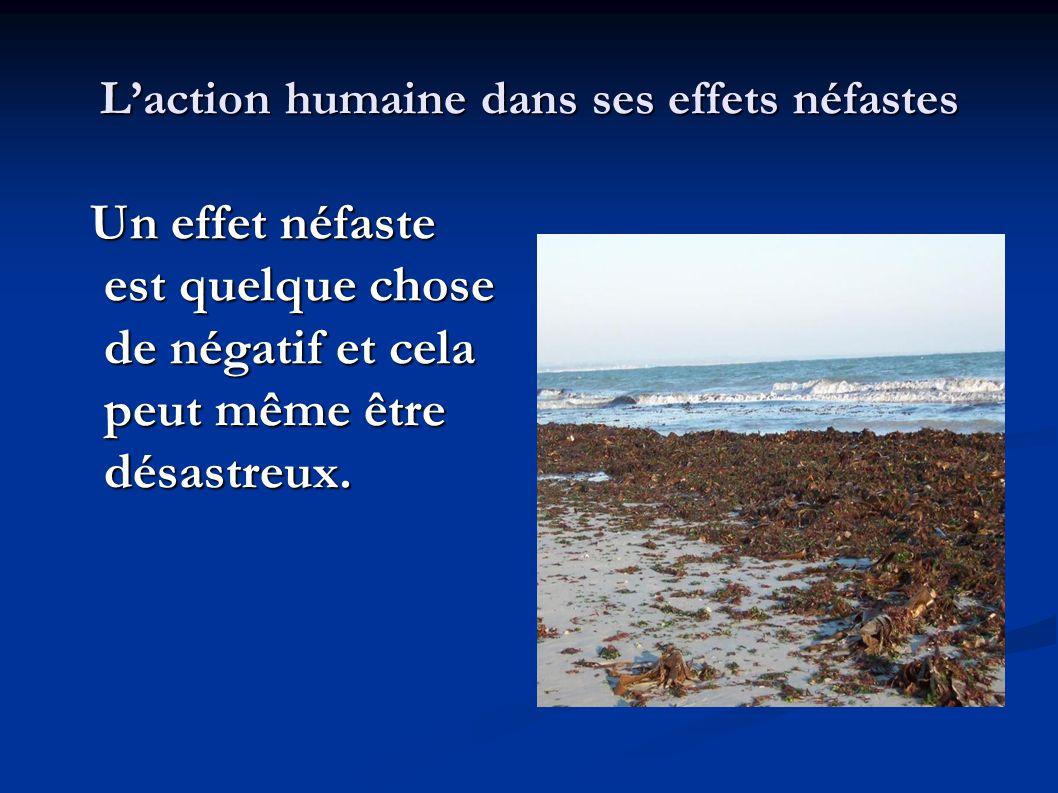 L'action humaine dans ses effets néfastes Un effet néfaste est quelque chose de négatif et cela peut même être désastreux. Un effet néfaste est quelqu