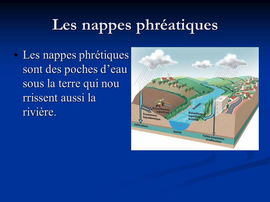Les nappes phréatiques •Les nappes phrétiques sont des poches d'eau sous la terre qui nou rrissent aussi la rivière.