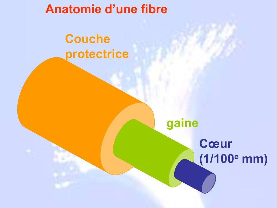 Grecs 1790 1854 1880 1927 1930 1950 1960 1964 1970 1977 Anatomie d'une fibre gaine Couche protectrice Cœur (1/100 e mm)
