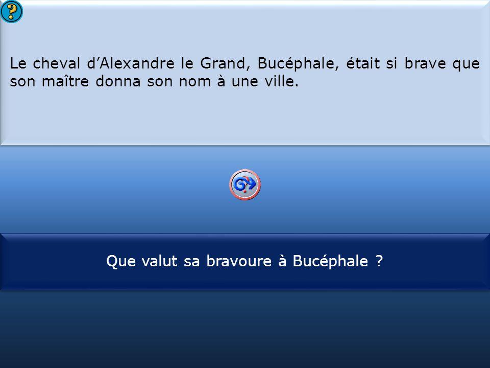 S1 Le cheval d'Alexandre le Grand, Bucéphale, était si brave que son maître donna son nom à une ville. Le cheval d'Alexandre le Grand, Bucéphale, étai
