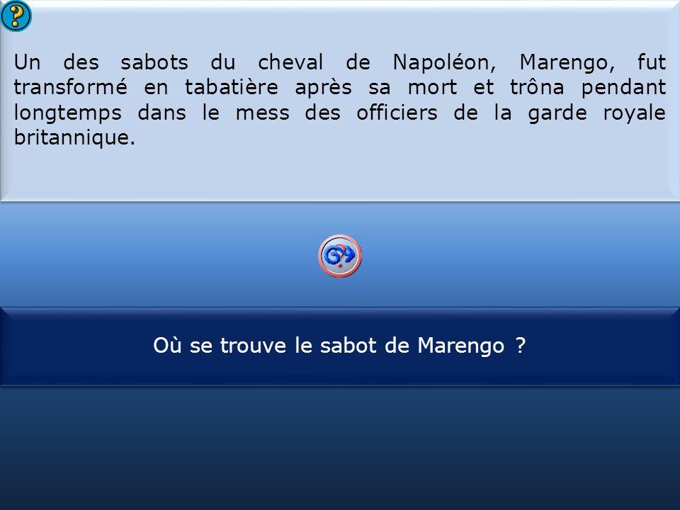 S1 Un des sabots du cheval de Napoléon, Marengo, fut transformé en tabatière après sa mort et trôna pendant longtemps dans le mess des officiers de la