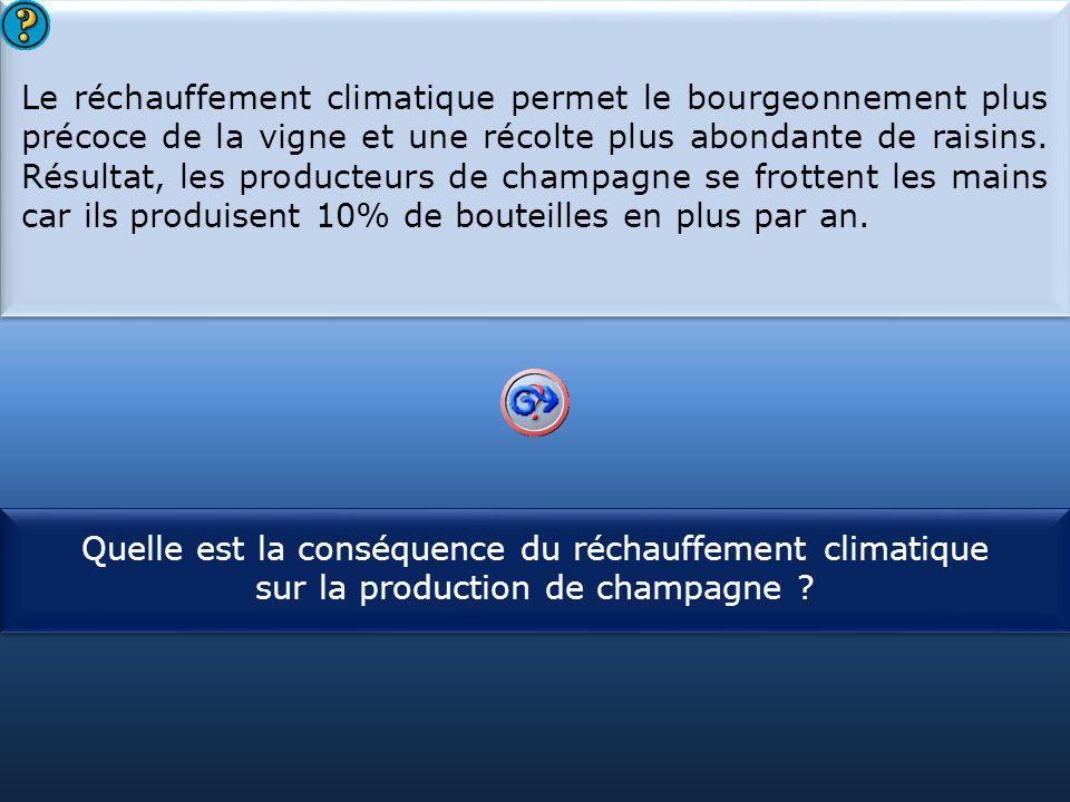 S1 Le réchauffement climatique permet le bourgeonnement plus précoce de la vigne et une récolte plus abondante de raisins.