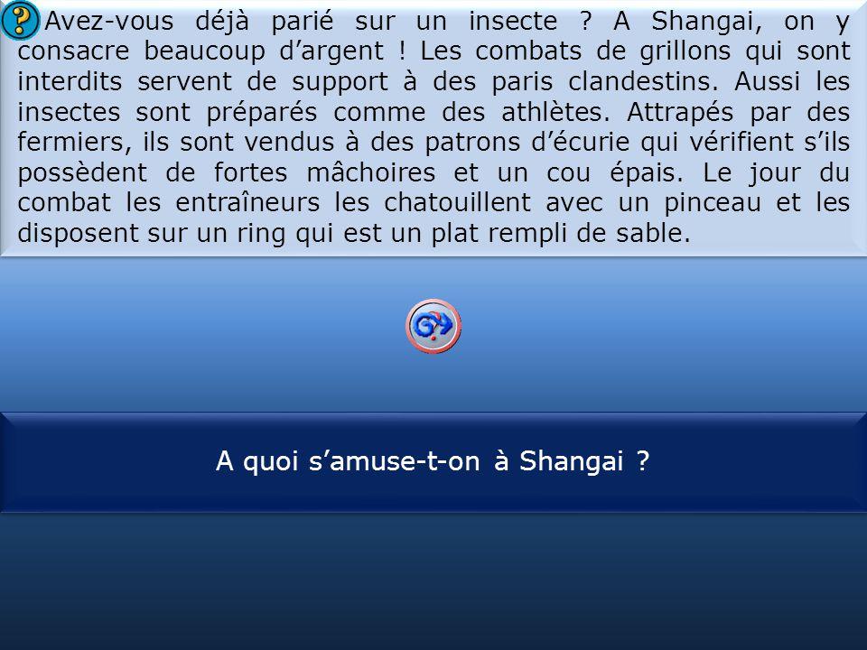 S1 Avez-vous déjà parié sur un insecte .A Shangai, on y consacre beaucoup d'argent .