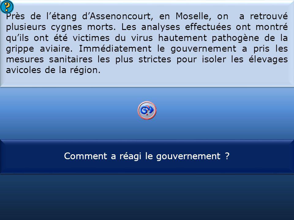 S1 Près de l'étang d'Assenoncourt, en Moselle, on a retrouvé plusieurs cygnes morts. Les analyses effectuées ont montré qu'ils ont été victimes du vir