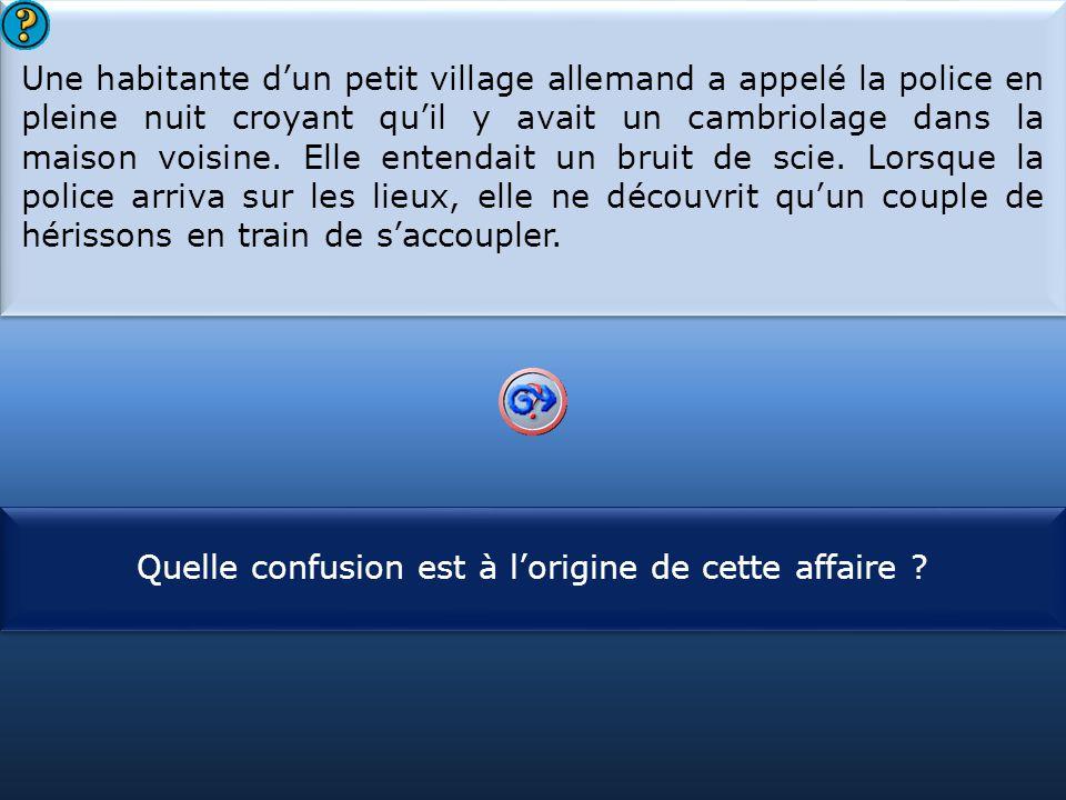 S1 Une habitante d'un petit village allemand a appelé la police en pleine nuit croyant qu'il y avait un cambriolage dans la maison voisine.