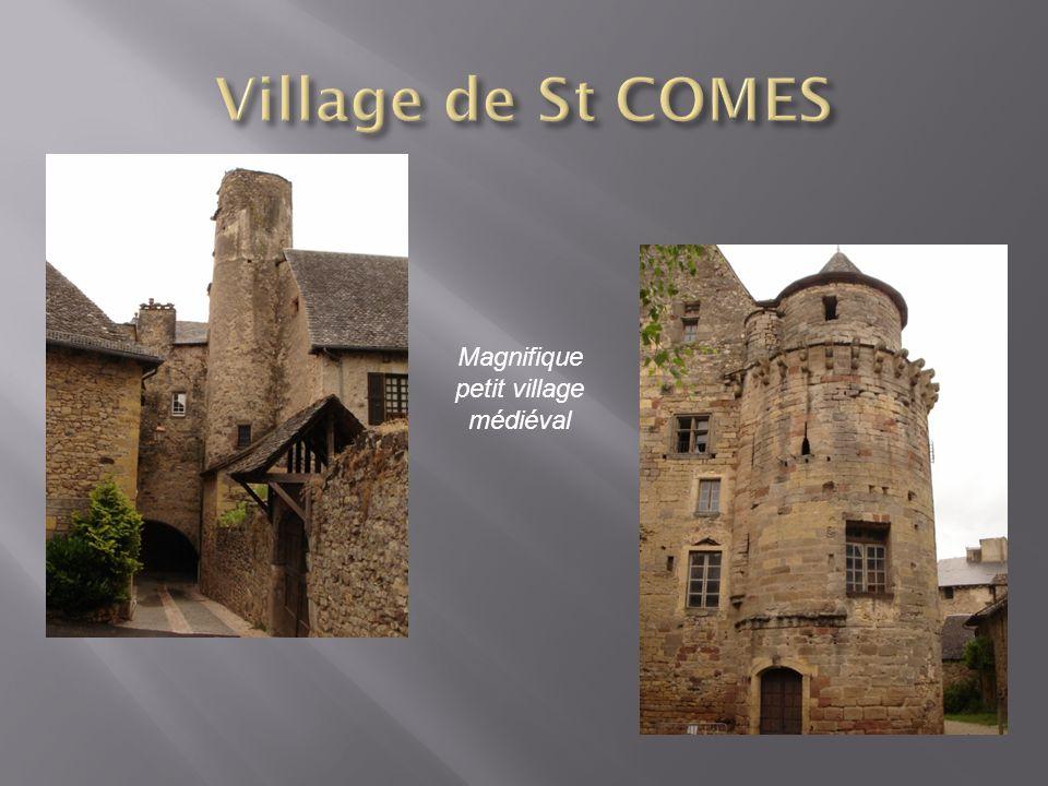 Magnifique petit village médiéval