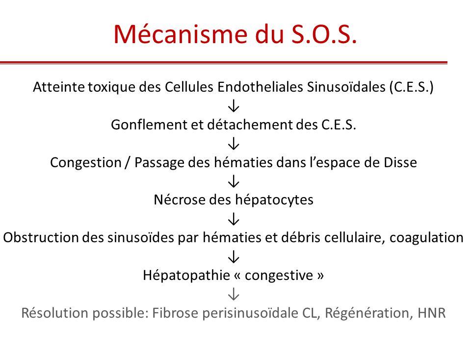Atteinte toxique des Cellules Endotheliales Sinusoïdales (C.E.S.) ↓ Gonflement et détachement des C.E.S. ↓ Congestion / Passage des hématies dans l'es