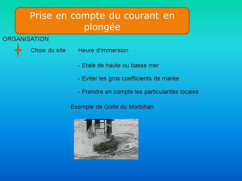 Prise en compte du courant en plongée ORGANISATION Choix du siteHeure d'immersion - Etale de haute ou basse mer - Eviter les gros coefficients de marée - Prendre en compte les particularités locales Exemple de Golfe du Morbihan