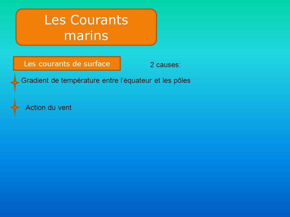 Les Courants marins Les courants de surface 2 causes: Gradient de température entre l'équateur et les pôles Action du vent