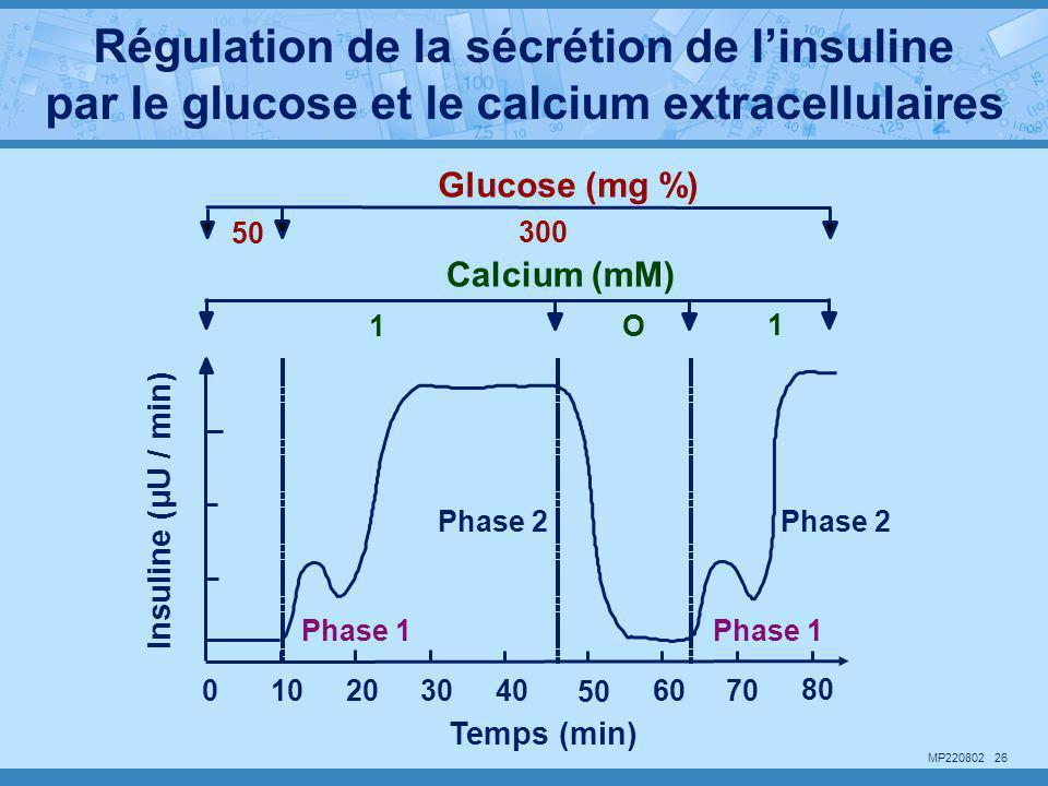 MP220802 26 Glucose (mg %) 50 300 Calcium (mM) 1O 1 Insuline (µU / min) Temps (min) Phase 1 Phase 2 Phase 1 Phase 2 102030 50 60700 80 40 Régulation d