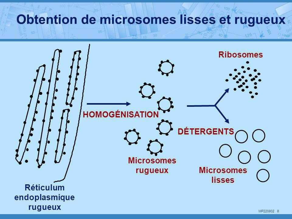 MP220802 8 HOMOGÉNISATION Microsomes rugueux Réticulum endoplasmique rugueux DÉTERGENTS Ribosomes Microsomes lisses Obtention de microsomes lisses et