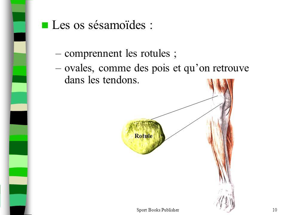 Sport Books Publisher10  Les os sésamoïdes : –comprennent les rotules ; –ovales, comme des pois et qu'on retrouve dans les tendons. Rotule