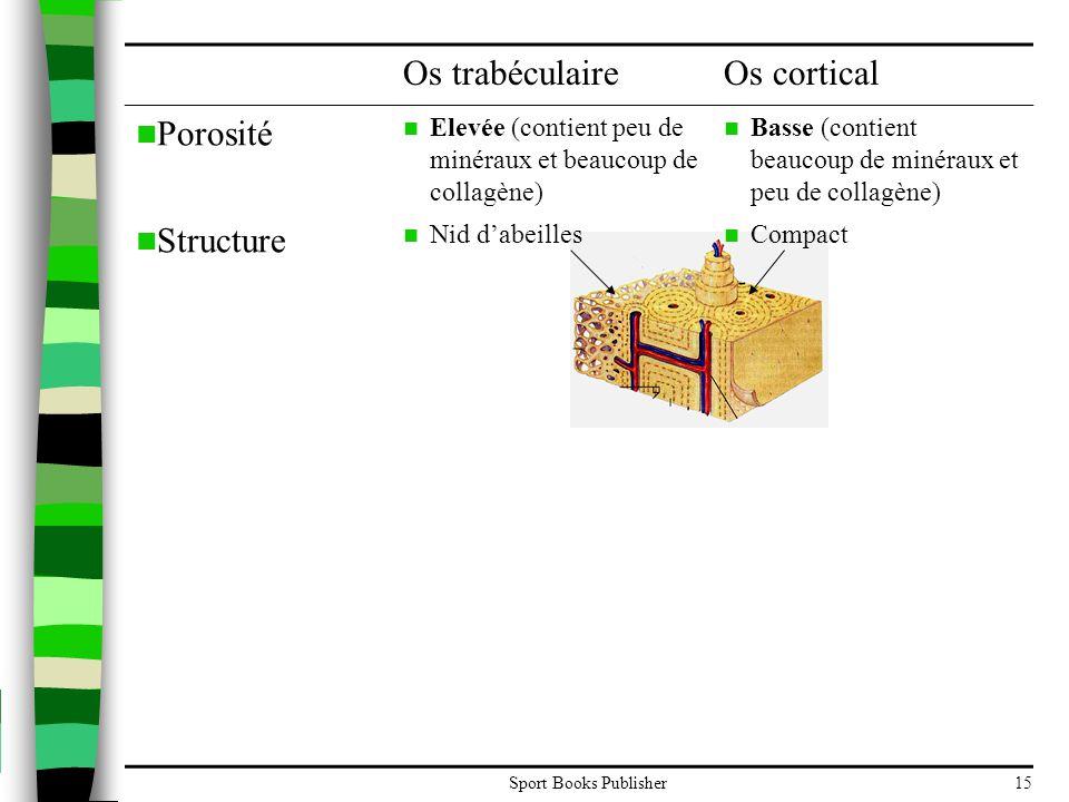Sport Books Publisher15 Os trabéculaireOs cortical  Porosité  Elevée (contient peu de minéraux et beaucoup de collagène)  Basse (contient beaucoup de minéraux et peu de collagène)  Structure  Nid d'abeilles  Compact