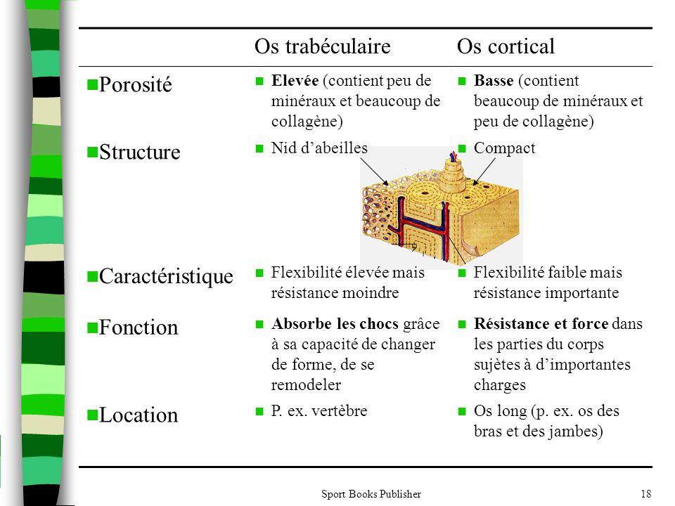 Sport Books Publisher18 Os trabéculaireOs cortical  Porosité  Elevée (contient peu de minéraux et beaucoup de collagène)  Basse (contient beaucoup