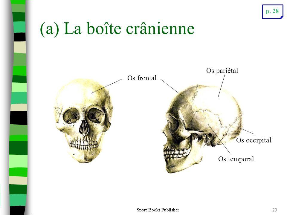 Sport Books Publisher25 (a) La boîte crânienne Os frontal Os pariétal Os temporal Os occipital p. 28