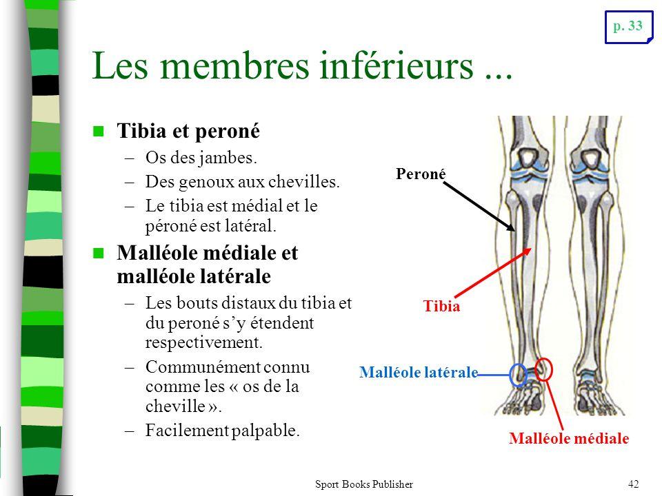 Sport Books Publisher42 Les membres inférieurs...  Tibia et peroné –Os des jambes. –Des genoux aux chevilles. –Le tibia est médial et le péroné est l