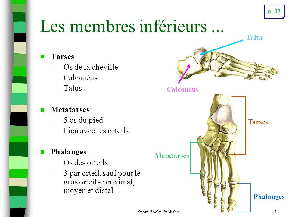 Sport Books Publisher43 Les membres inférieurs...  Tarses –Os de la cheville –Calcanéus –Talus  Metatarses –5 os du pied –Lien avec les orteils  Ph