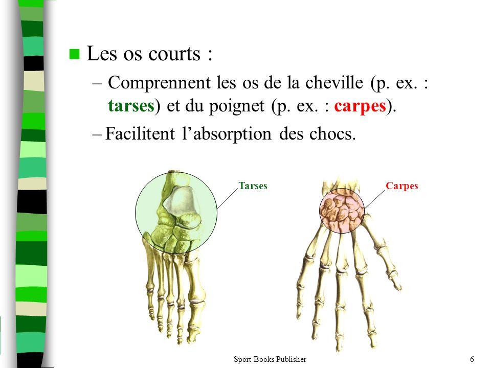 Sport Books Publisher6  Les os courts : –Comprennent les os de la cheville (p.