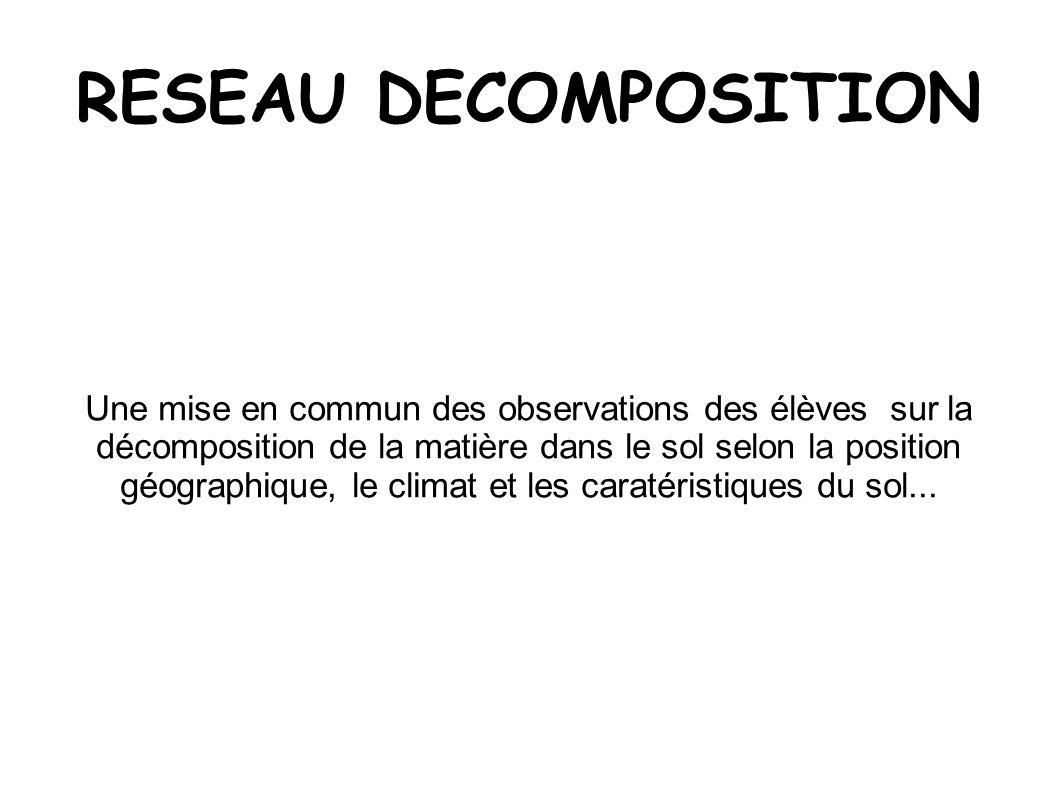 RESEAU DECOMPOSITION Une mise en commun des observations des élèves sur la décomposition de la matière dans le sol selon la position géographique, le