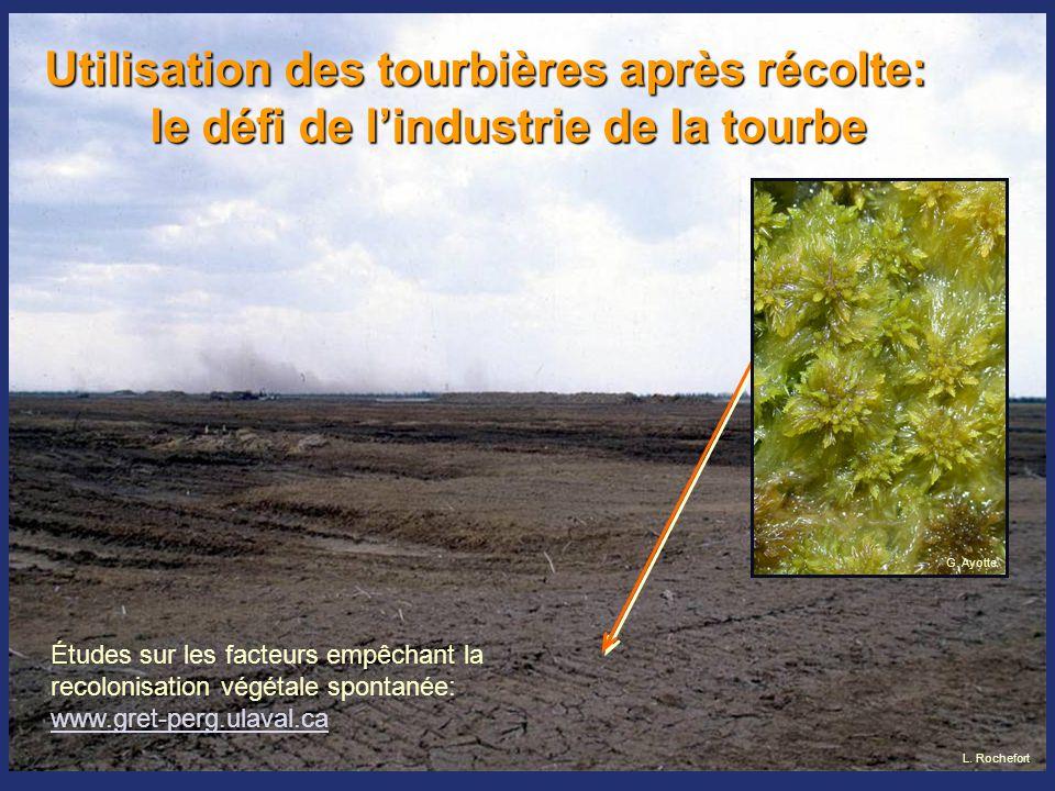 Restauration d'un tapis de mousse  Les recherches ont d'abord porté sur la biologie des sphaignes  Espèce clé de l'écosystème  Grande capacité de régénération GRET 1994 GRET 1998 GRET 1994 GRET 2003