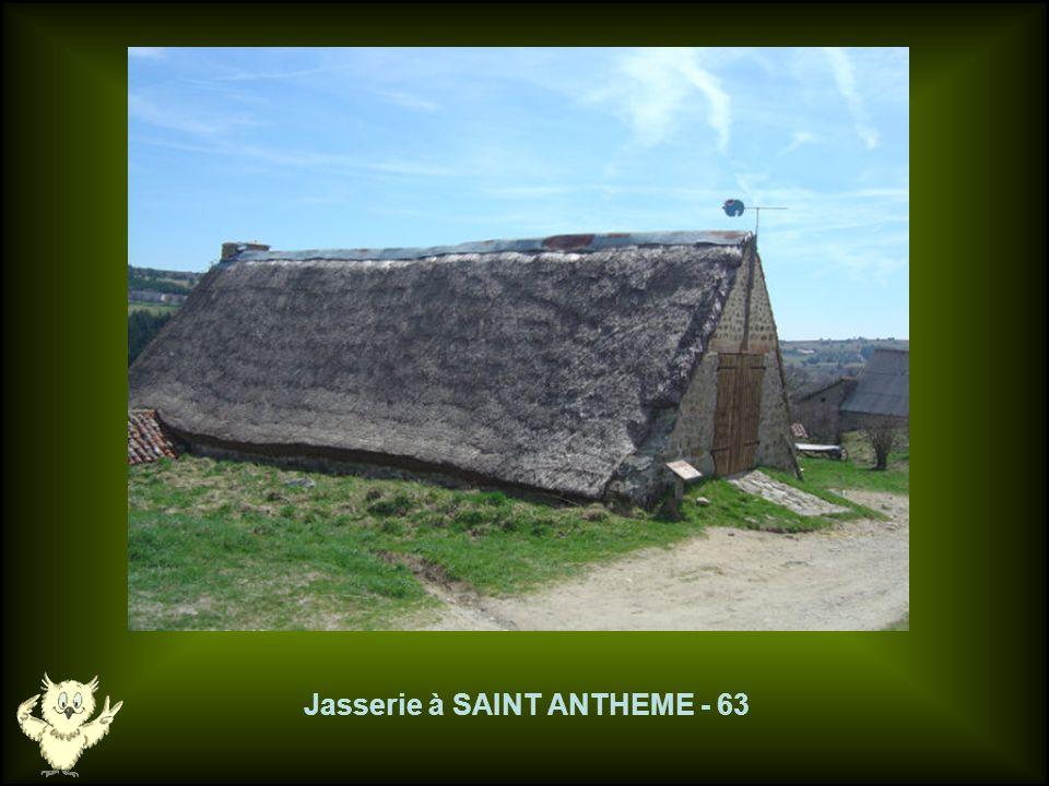Le droséra de JEANSAGNIERES - 42 JEANSAGNIERES - 42